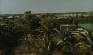 A view of lakes and palms in the BIAP area.