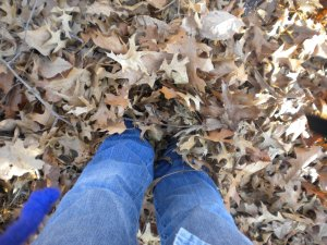 Walking in very deep leaves!