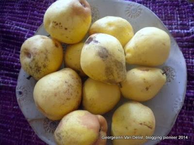 Pears5-001