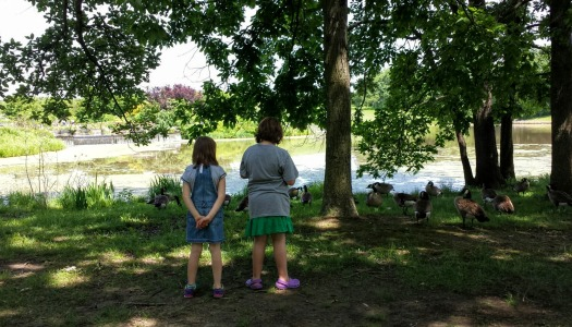 My daughters looking at the geese at a botanical garden in Missouri.